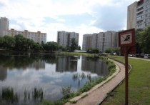 После гибели мальчика искусственный пруд возле московской школы потребовали оградить
